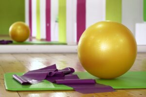 swiss ball gym ball
