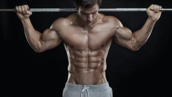 workout musculation